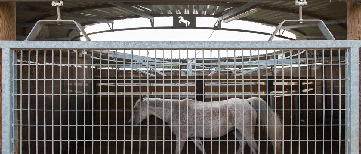 pension cheval à Lyon formule Évolution - le marcheur du centre équestre