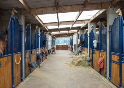 Écuries propriétaires de chevaux - Centre Équestre L'alezane