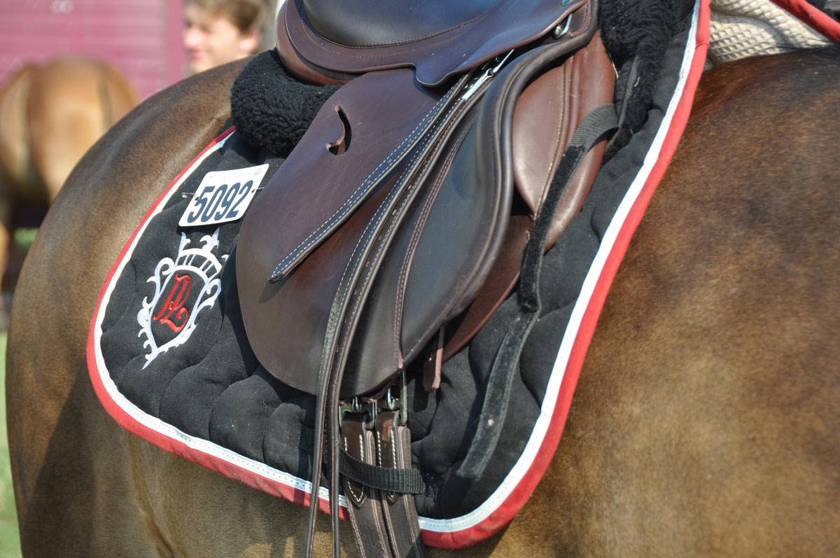 Les écuries de L'alezane participent tous les ans à plusieurs concours d'équitation externes…
